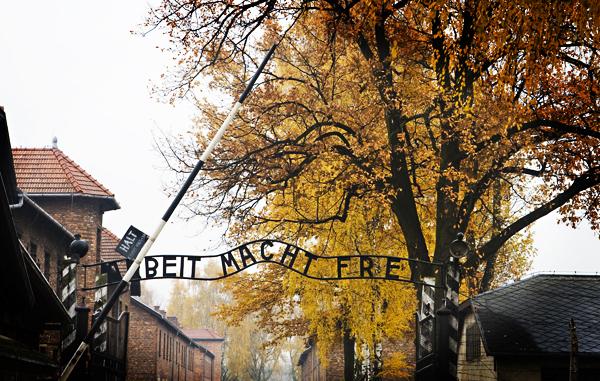 Visiting Auschwitz I