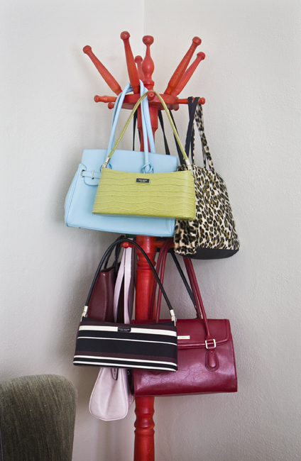 Creative Purse Storage