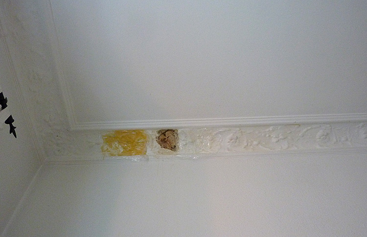 Renovating an Old Apartment - Crown Molding